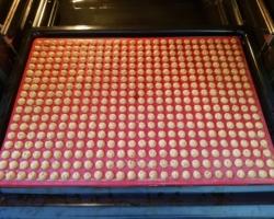 Backmatte im Backofen mit gebackenen Keksen